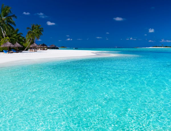 caraibi, honeymoon, wednews